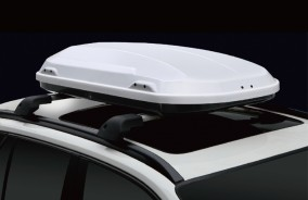 Car roof luggage box RX51